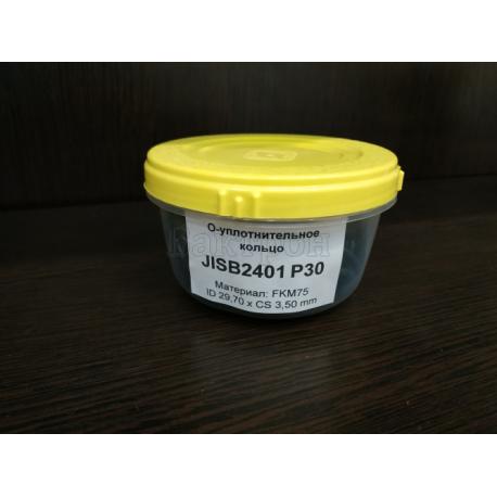 JISB2401 P30